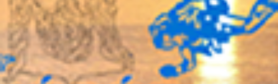 Résultats du grand concours Nérée
